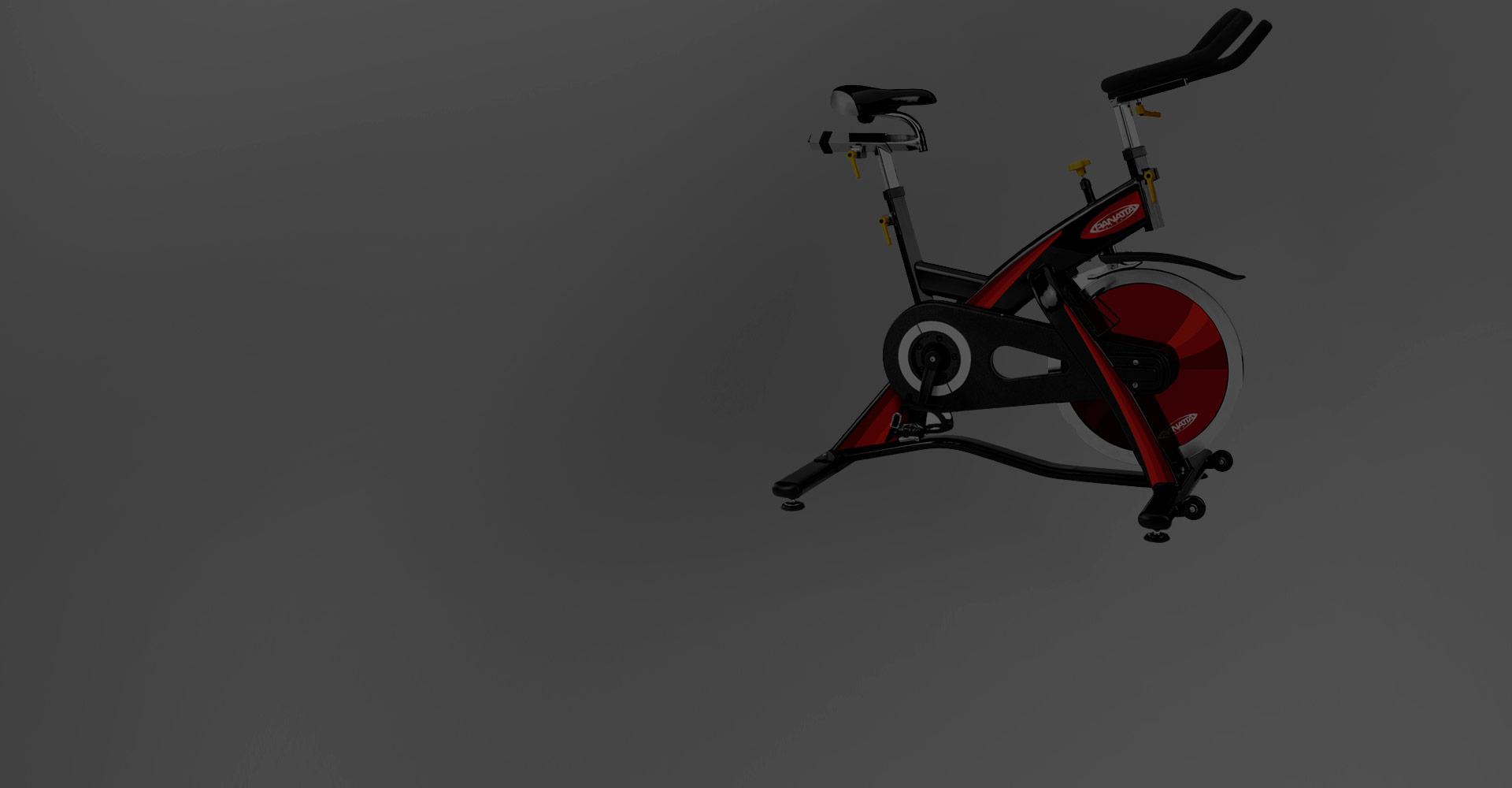Star Bike Evolution - Panatta